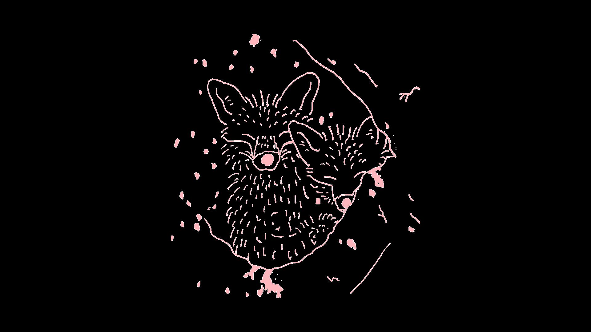 kaity fox